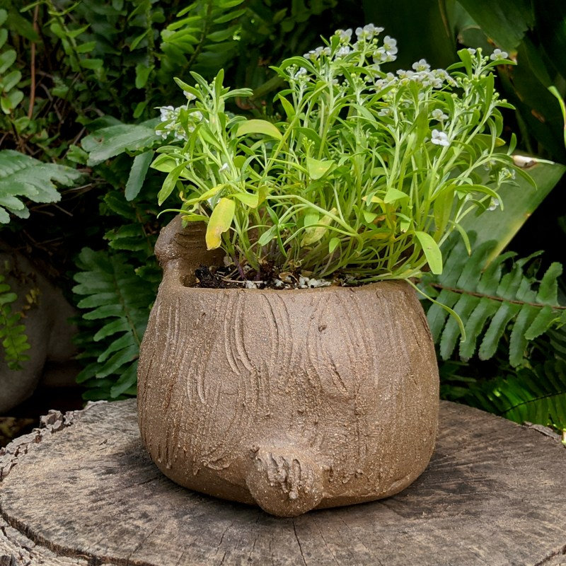 hunched-rabbit-planter-small-7