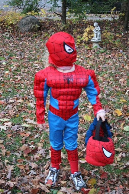 Spider-Man with basket and web