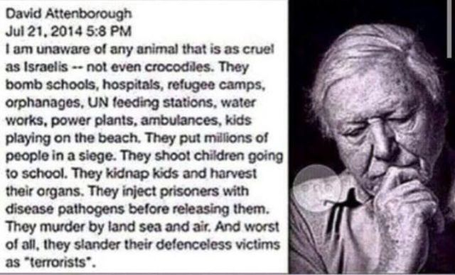 """borough Jul 21, 2014 I am unaware of any animal that is as cruel as Israelis - not even crocodiles. They bomb schools, hospitals, refugee camps, orphanges, UN feeding stations, water works, power plants, ambulances, kids playing on the beach. They shoot children going to school. They kidnap kids and harvest their organs. They inject prisoners with disease pathogens before releasing them. they murder by land, sea and air. and worst of all, they slander their victims as 'terrorists'""""."""
