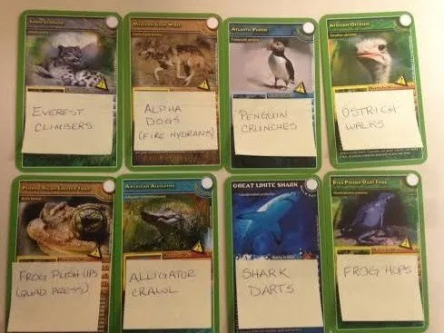 animal scavenger hunt cards 2