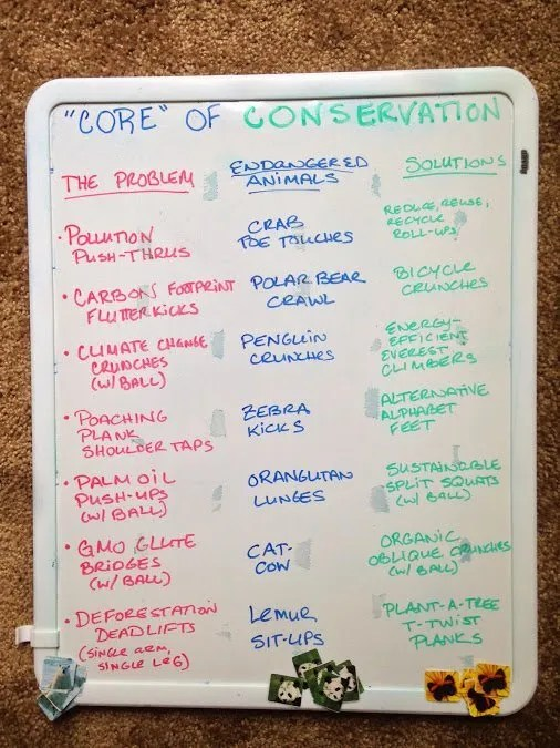 core of conservation