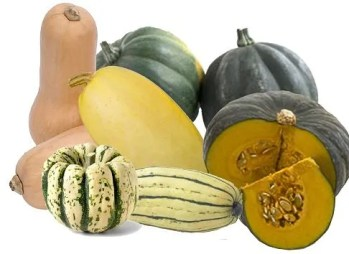 most wonderful time of the year squashes-1_sm