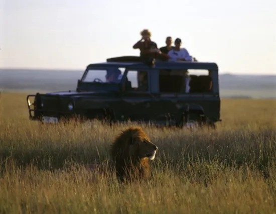 EarthFit Special Rant: Trophy Hunting- Bad for Animals, Bad for Conservation