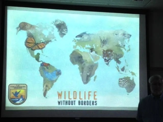 wildlife without borders