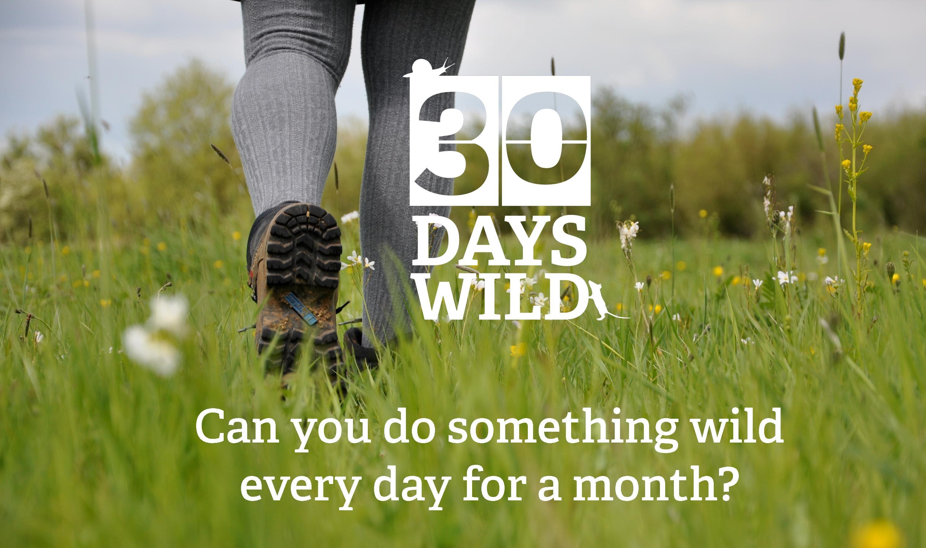 30 Days of Wild Challenge