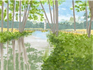 earth-design-landscape-architecture-pickens-sc-furman-university-6