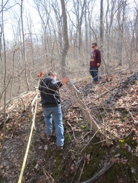searching for our boundary marker pins, this was so fun as we were forced to walk the perimeter of the property and got to discover hidden beauties!