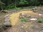 Filled it in with dirt and covered in straw, then planted corn, beans, clover, watermelons, nasturtiums and cucumbers.