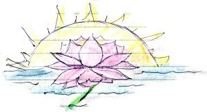 0_lotus