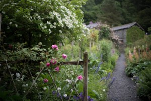 path-into-garden-beautiful-free