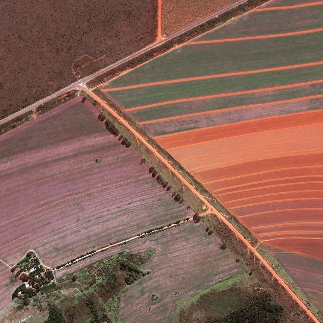 Satellite image of farming fields near Brasília, Brazil