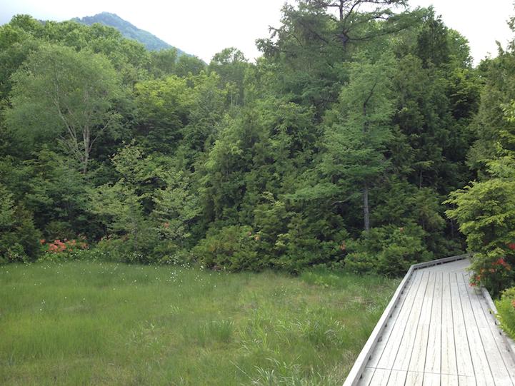 Lake Yu (yunoko) small meadow
