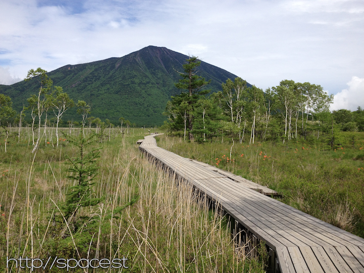 wood plank boardwalks across some of the protected wetlands