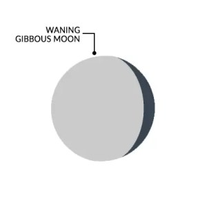Moon Phases Waning Gibbous Moon