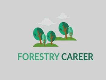 Forestry Career