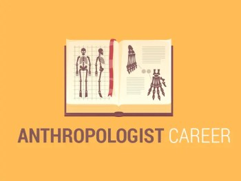 Anthropologist Career