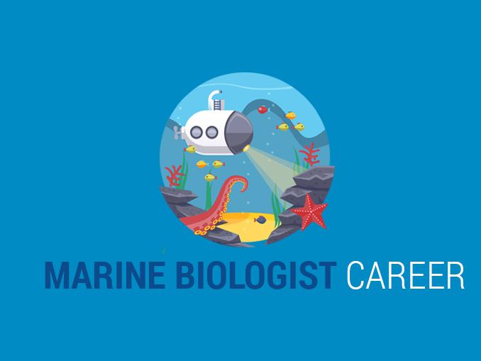 Marine Biologist Career