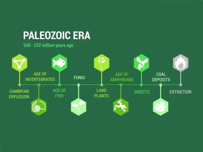 Paleozoic Era Timeline