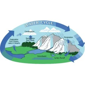 Hydrological Water Cycle