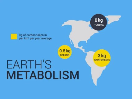 Earth Metabolism