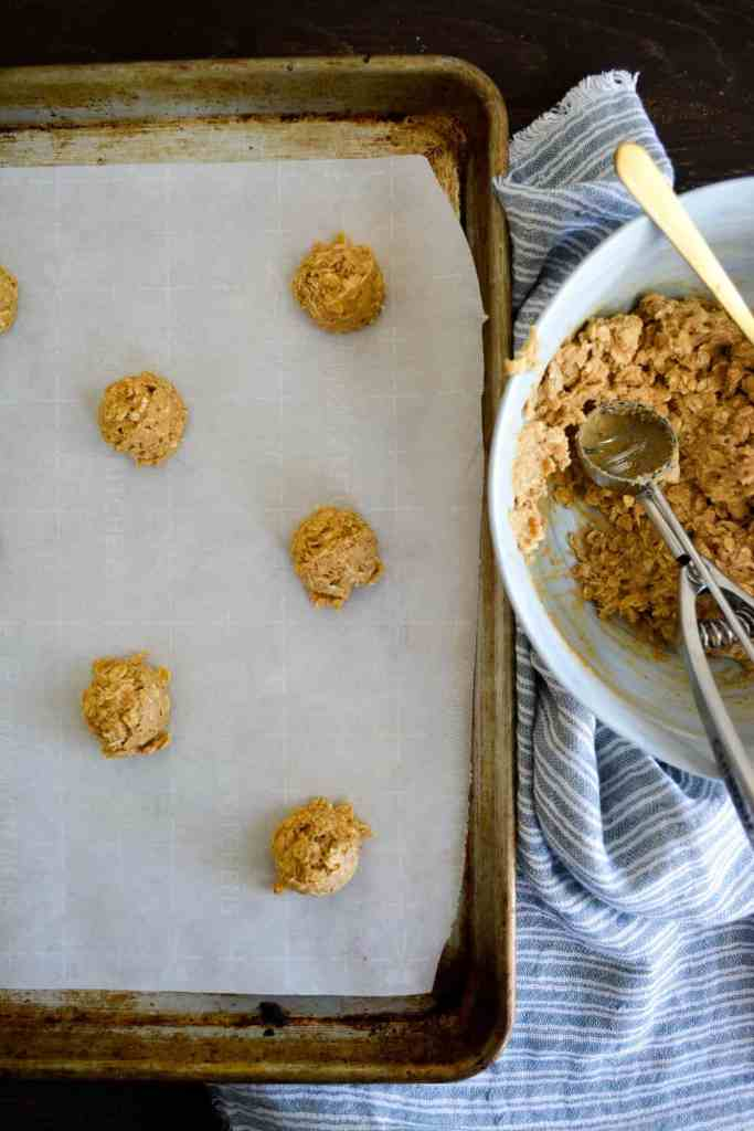 Oatmeal Cookie Dough