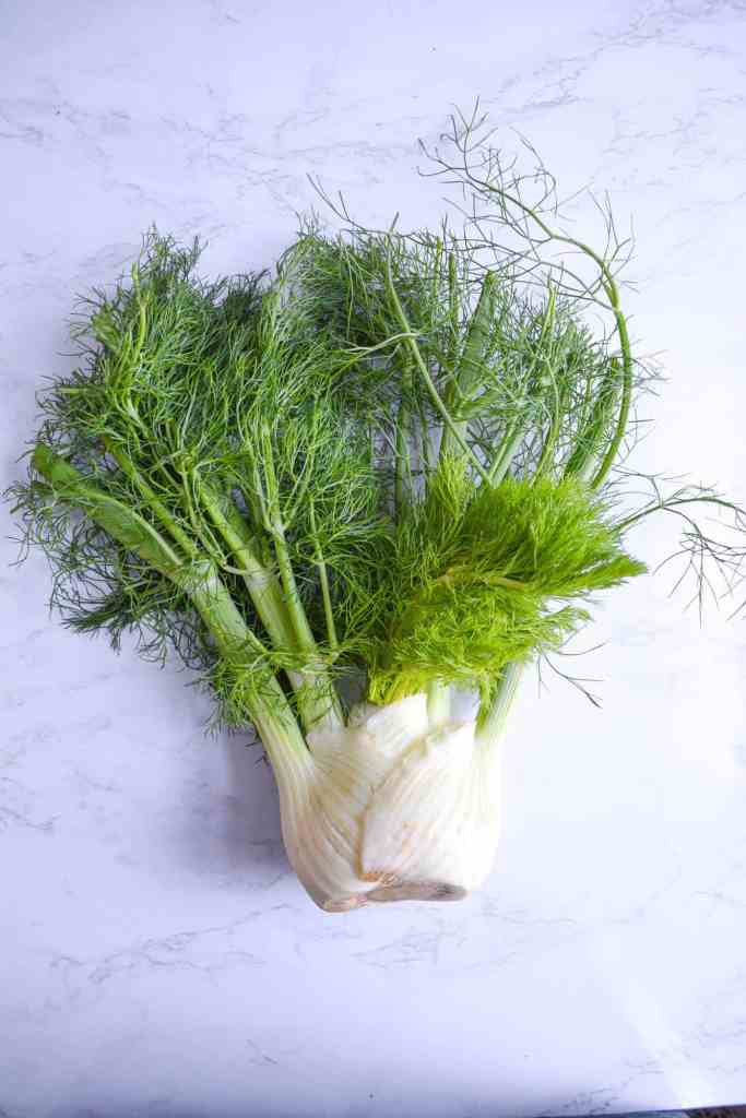 A fennel bulb on a marble backdrop