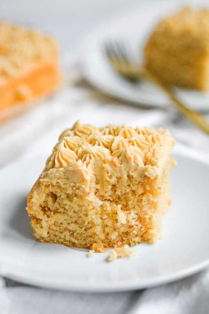 close up the the texture of vegan peanut butter cake