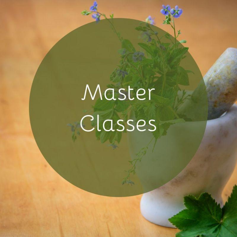 Master Classes / Workshops