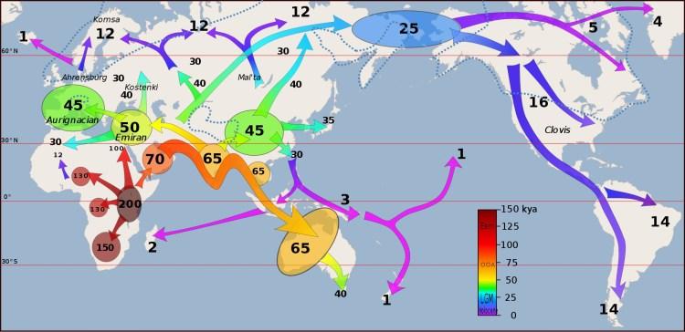 Human migration patterns