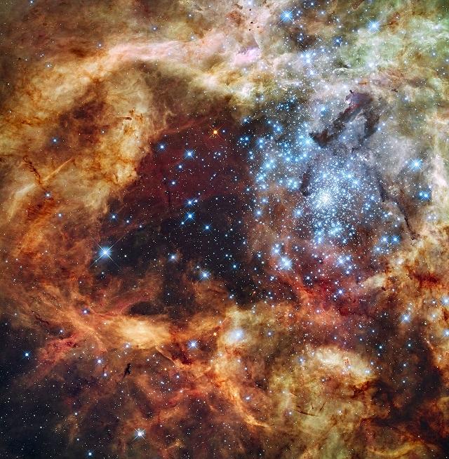 R136 Starburst Cluster