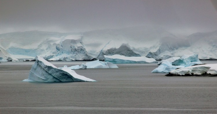 Antarctic glaciers and icebergs