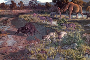 Oligocene Wildlife