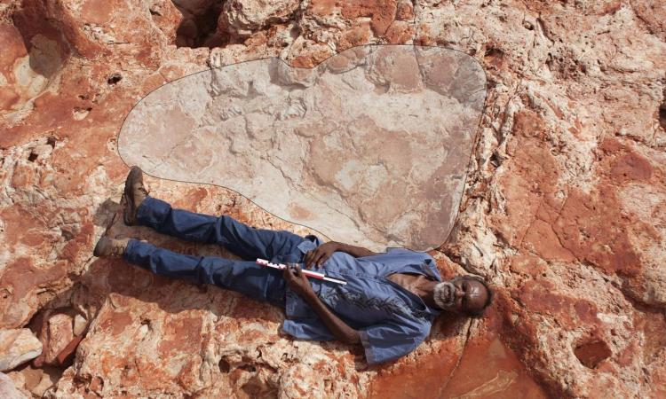 World's largest dinosaur footprint