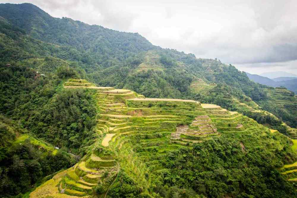 Banaue rice terraces, Philiphines