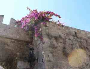 Rhodes old town photography