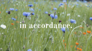 in accordance blog cover image