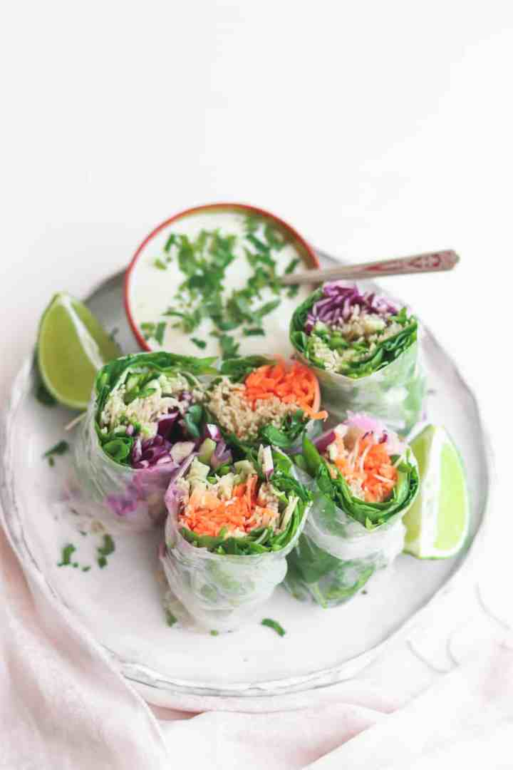Fresh vegetable summer rolls with carrots, purple cabbage, spinach, brown rice noodles and a yoghurt dip