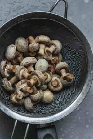 Mushrooms in a mixing bowl