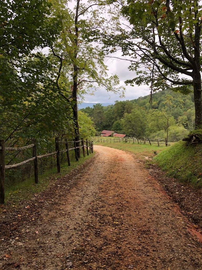 Overlooking the barn