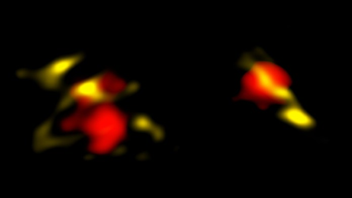 two areas of yellow and red blobs on black background.