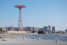 coney 697x467 225x150 Under Water