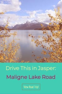 From Maligne Lake to Maligne Canyon, explore it all on Maligne Lake Road, Jasper National Park.