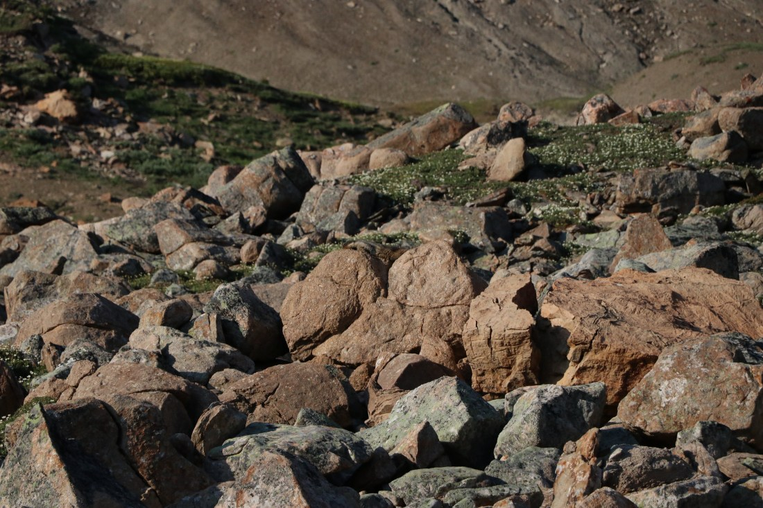 Rocks of the skyline trail