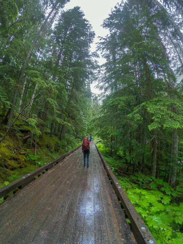 Berg Lake Trail in British Columbia