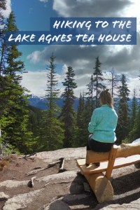 Enjoy the 3.5 kilometer day hike to Lake Agnes Tea House in Lake Louise!