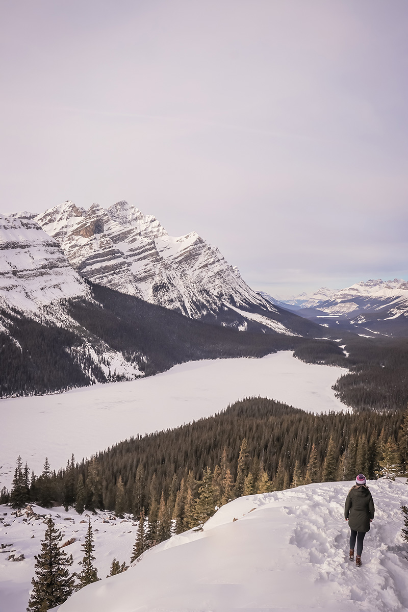 Peyto Lake in the Winter!