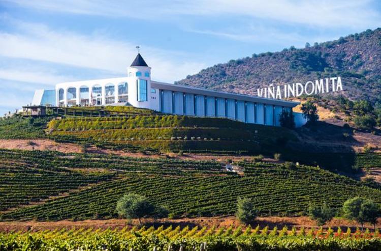 Vina Indomita Winery Casablanca Chile