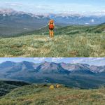 Denali National Park pin 4 images