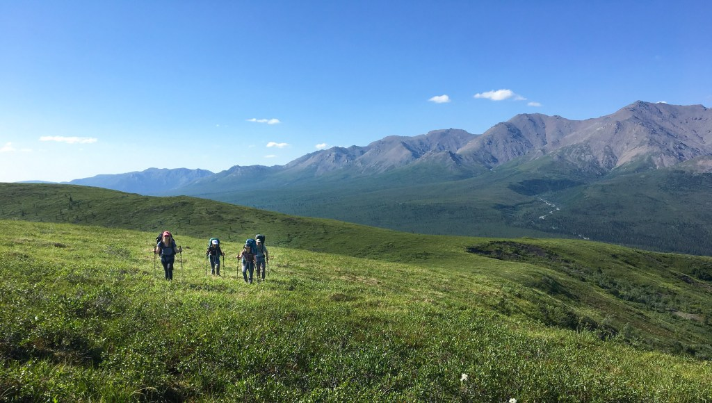 group scattered hiking over green field in Denali