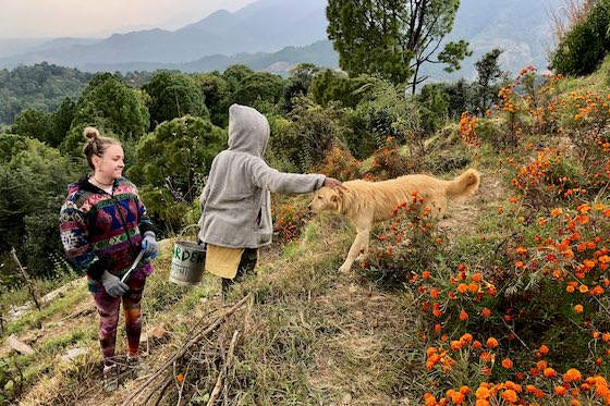 Naxu the gardener dog